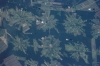 NASA photo of deforestation in Tierras Bajas project, Bolivia