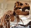 exxonmobil-dinosaur-200px.jpg