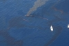 sace-gulf-spill-flyover-200px.jpg